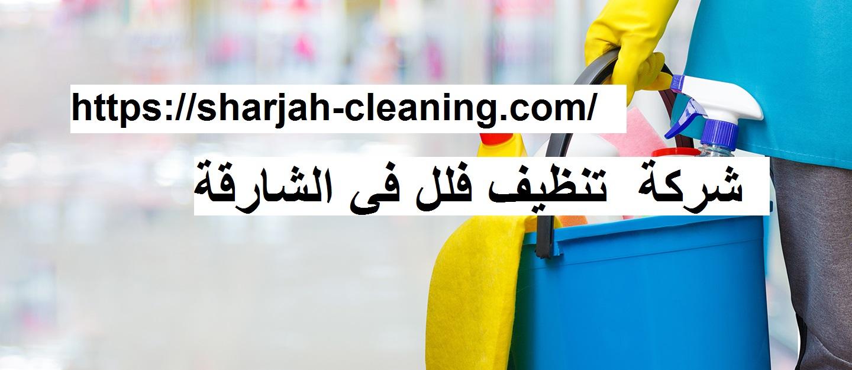 شركة تنظيف فلل فى الشارقة