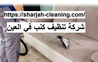 شركة تنظيف كنب في العين